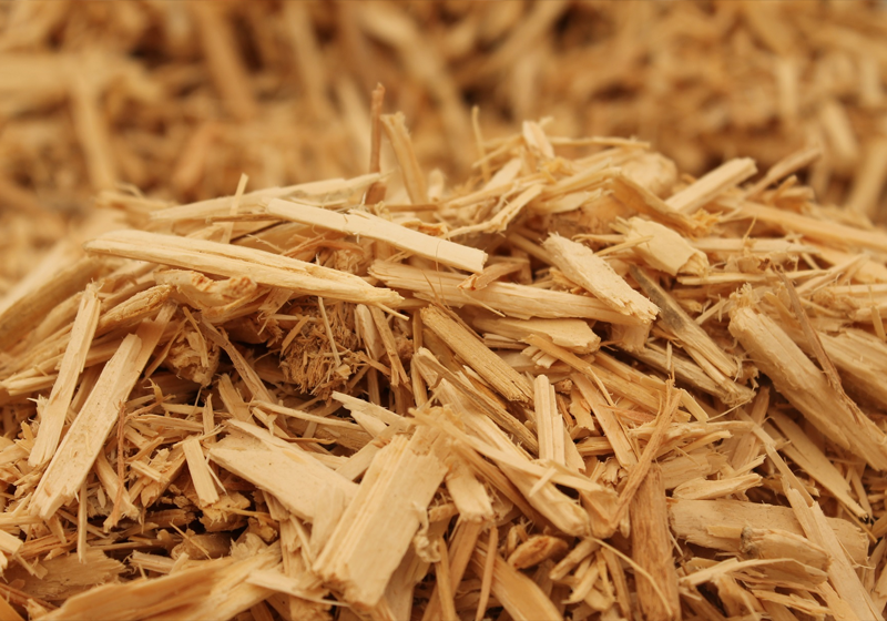 biomass recycling wood